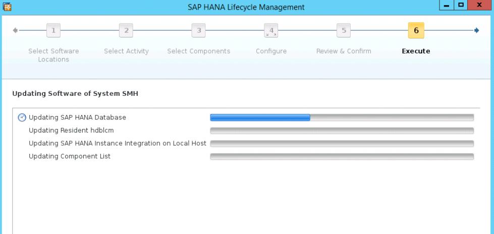 SAP HANA PATCH UPGRADE